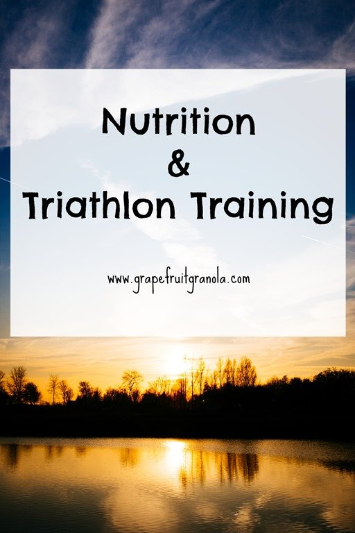 sprint triathlon training plan pdf
